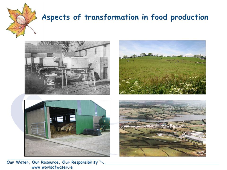Our Water, Our Resource, Our Responsibility www.worldofwater.ie Aspects of transformation in food production