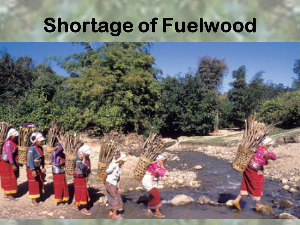 Shortage of Fuelwood