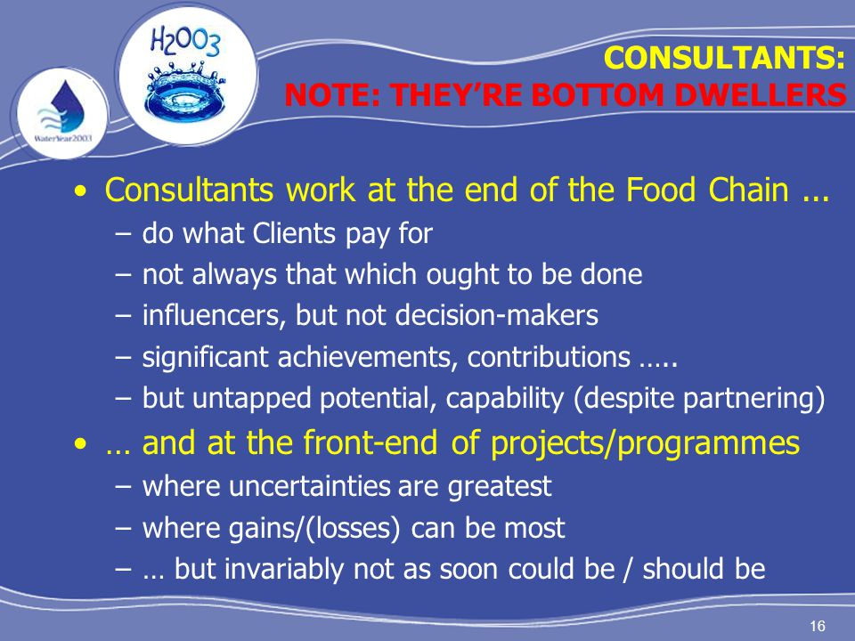 16 Consultants work at the end of the Food Chain... –do what Clients pay for –not always that which ought to be done –influencers, but not decision-ma