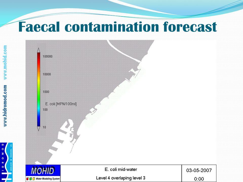 www.hidromod.com www.mohid.com Faecal contamination forecast