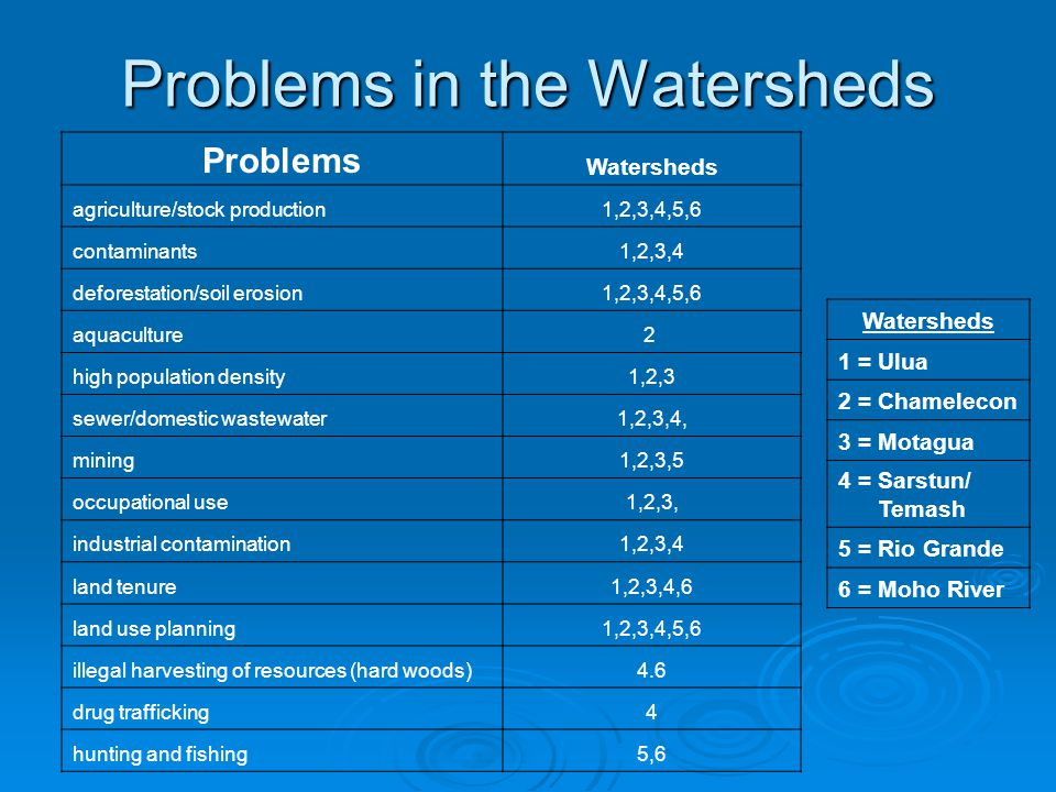 Problems in the Watersheds Problems Watersheds agriculture/stock production1,2,3,4,5,6 contaminants1,2,3,4 deforestation/soil erosion1,2,3,4,5,6 aquac