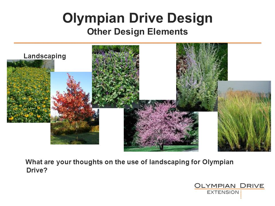 Olympian Drive Design Other Design Elements Landscaping What are your thoughts on the use of landscaping for Olympian Drive