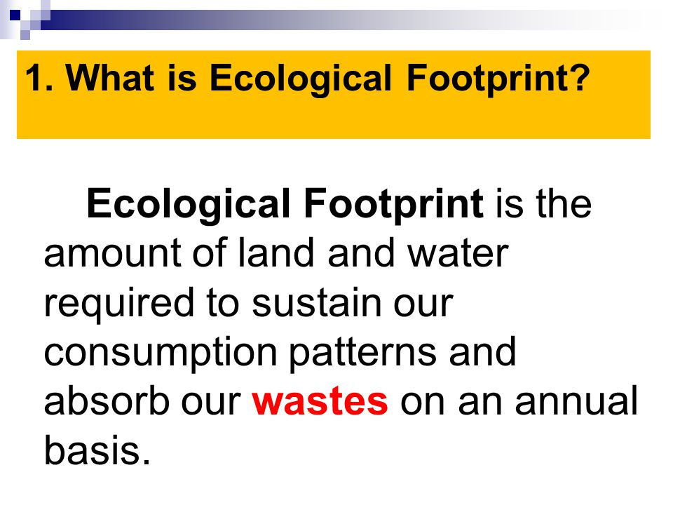 If we destroy our environment we will no longer have a habitat and food source.