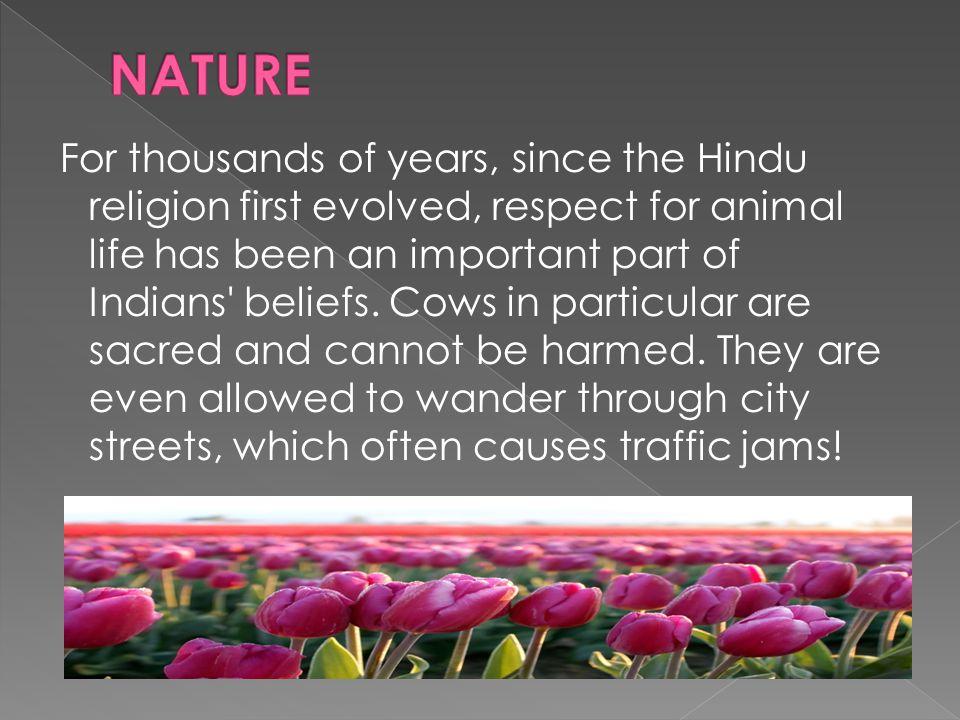 Major Mountain Range: Himalaya  Major Rivers: Ganges, Yamuna, Indus, Brahmaputra