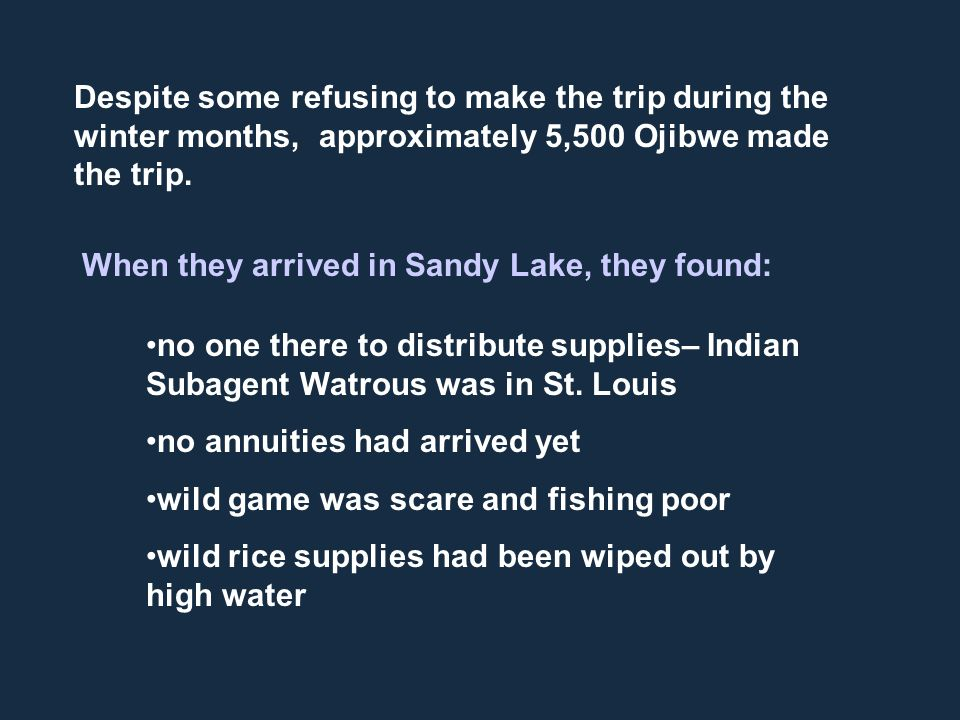 Despite some refusing to make the trip during the winter months, approximately 5,500 Ojibwe made the trip. When they arrived in Sandy Lake, they found