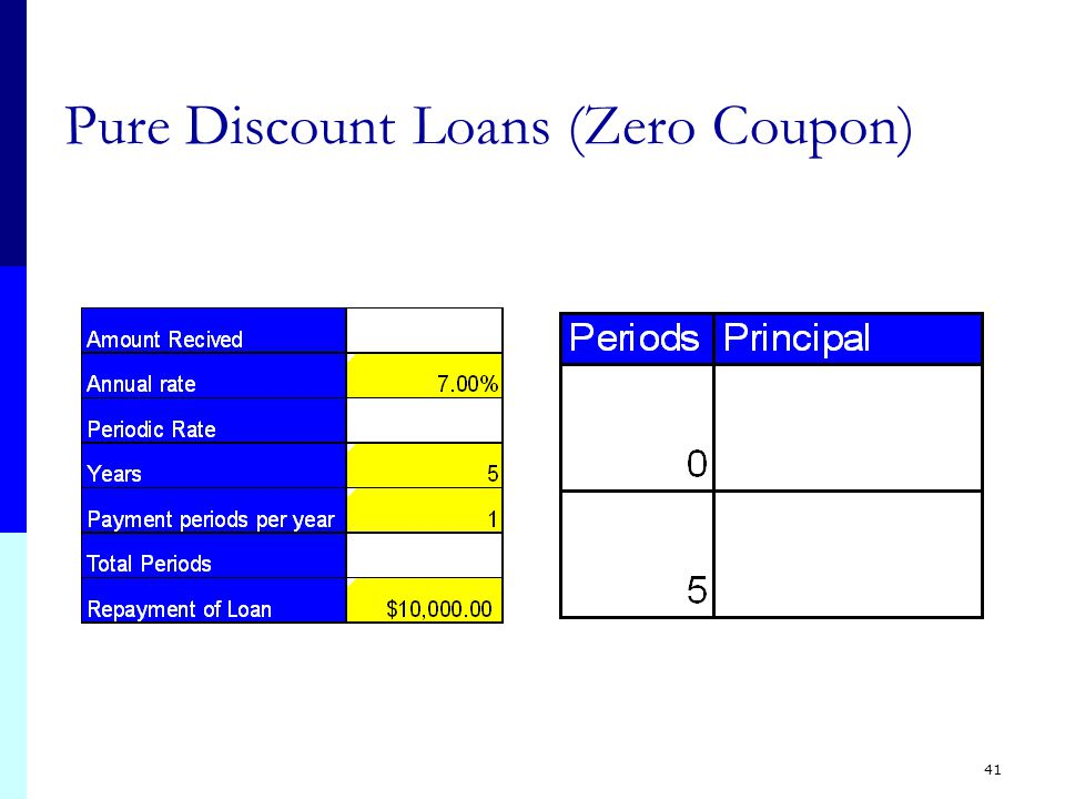 41 Pure Discount Loans (Zero Coupon)