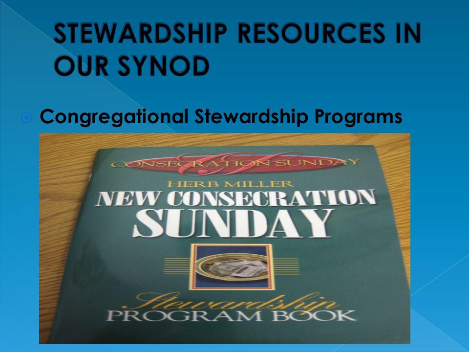  Congregational Stewardship Programs
