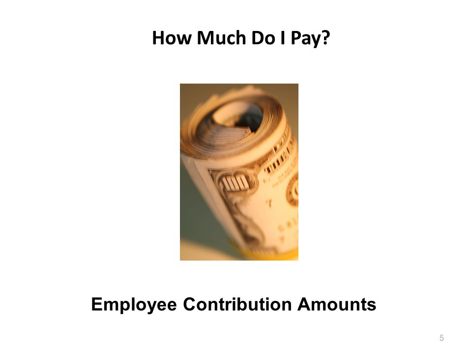 How Much Do I Pay? 5 Employee Contribution Amounts