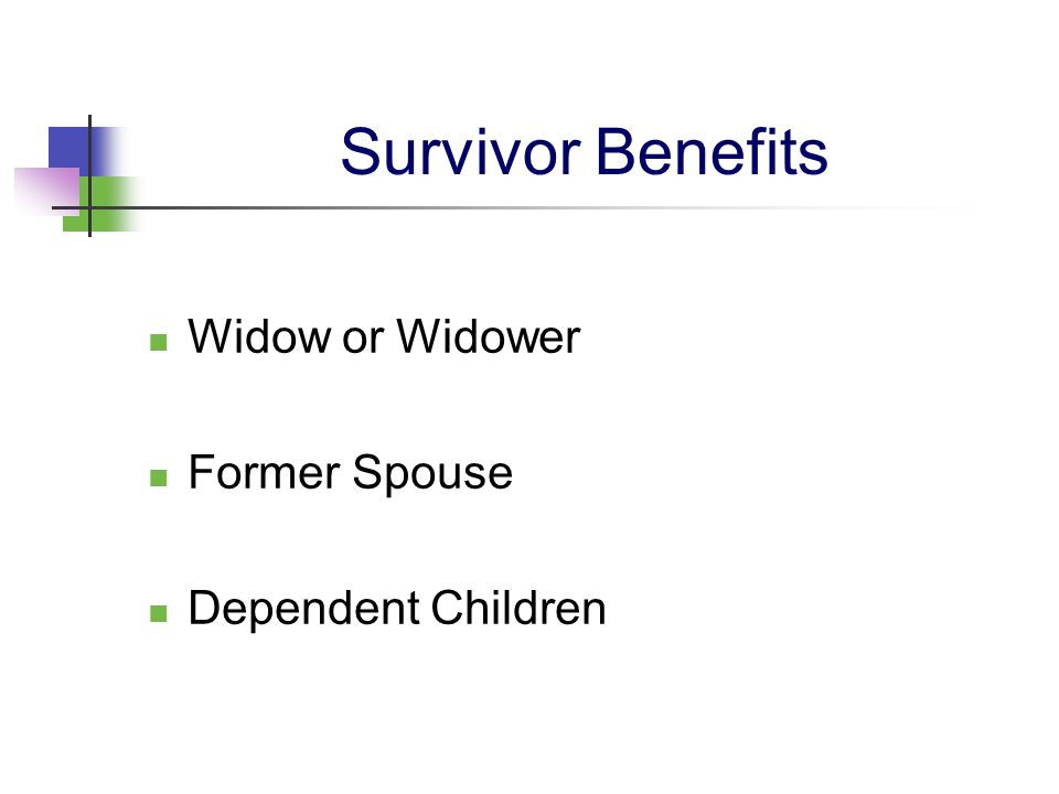 Survivor Benefits Widow or Widower Former Spouse Dependent Children