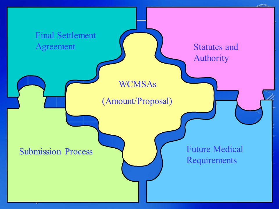 2 WCMSAs (Amount/Proposal) Statutes and Authority Future Medical Requirements Submission Process Final Settlement Agreement