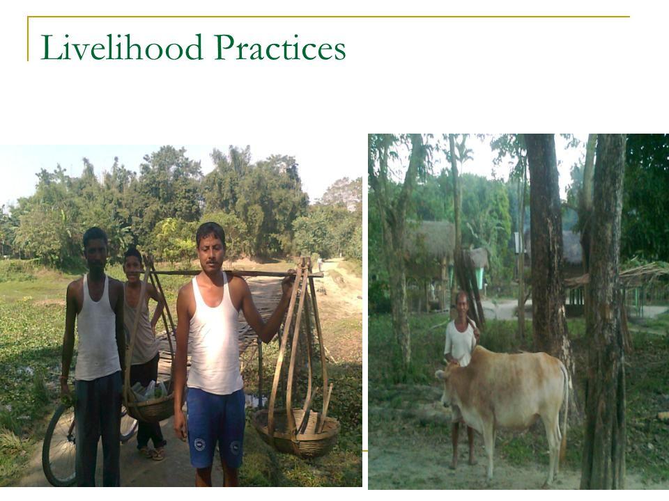 12 Livelihood Practices