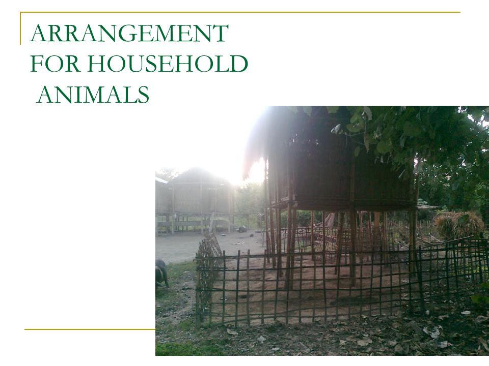 19 ARRANGEMENT FOR HOUSEHOLD ANIMALS