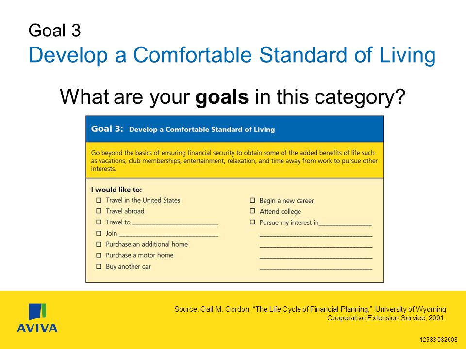 12383 082608 Goal 3 Develop a Comfortable Standard of Living What are your goals in this category.