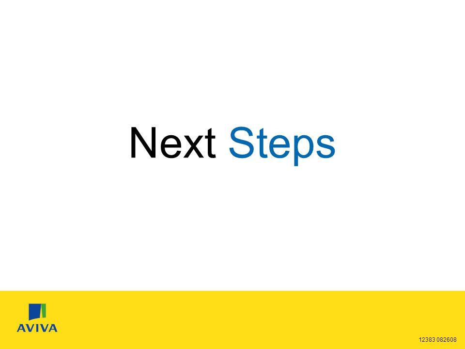 12383 082608 Next Steps 28%