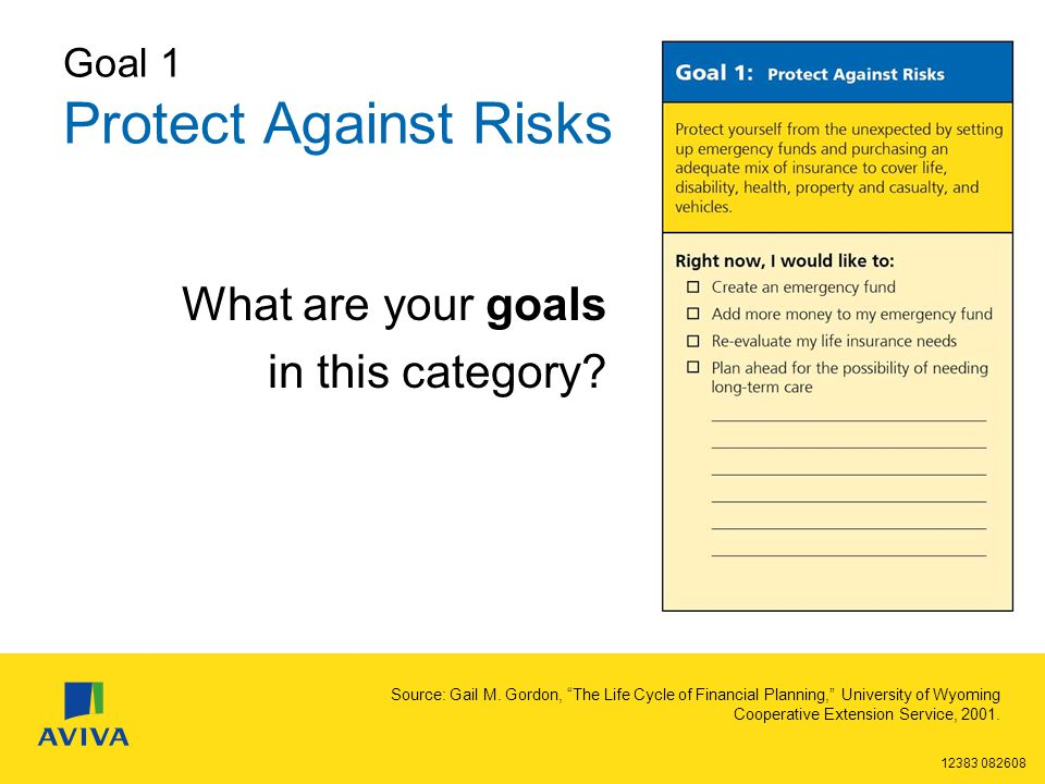 12383 082608 Goal 1 Protect Against Risks What are your goals in this category.