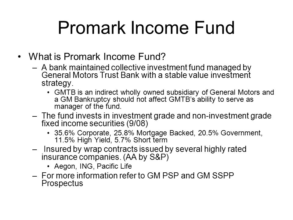 Promark Income Fund What is Promark Income Fund.