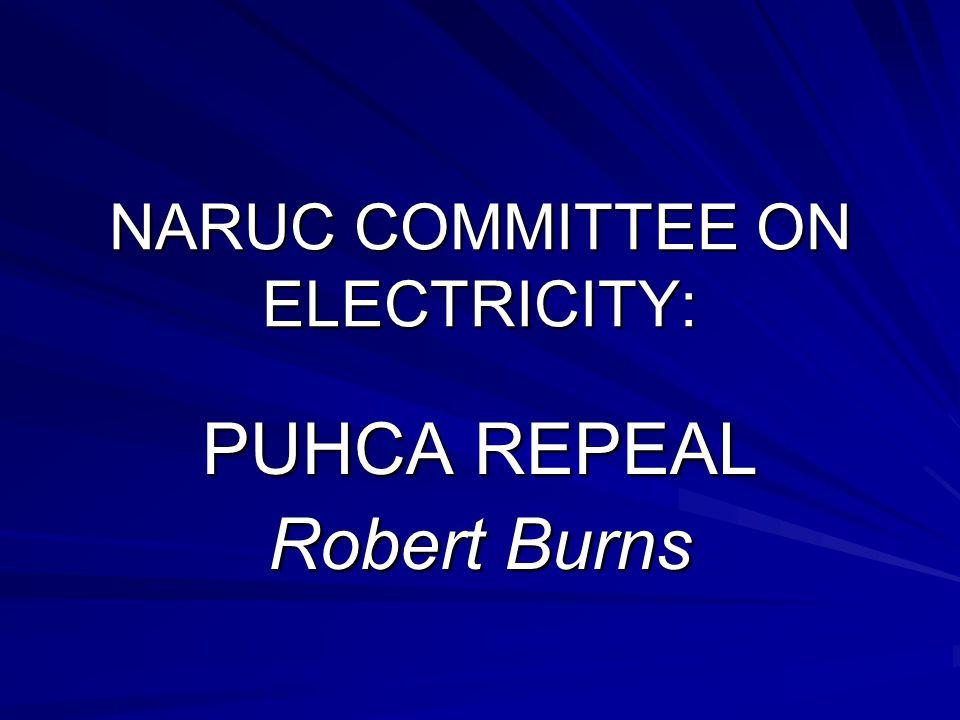 NARUC COMMITTEE ON ELECTRICITY: PUHCA REPEAL Robert Burns