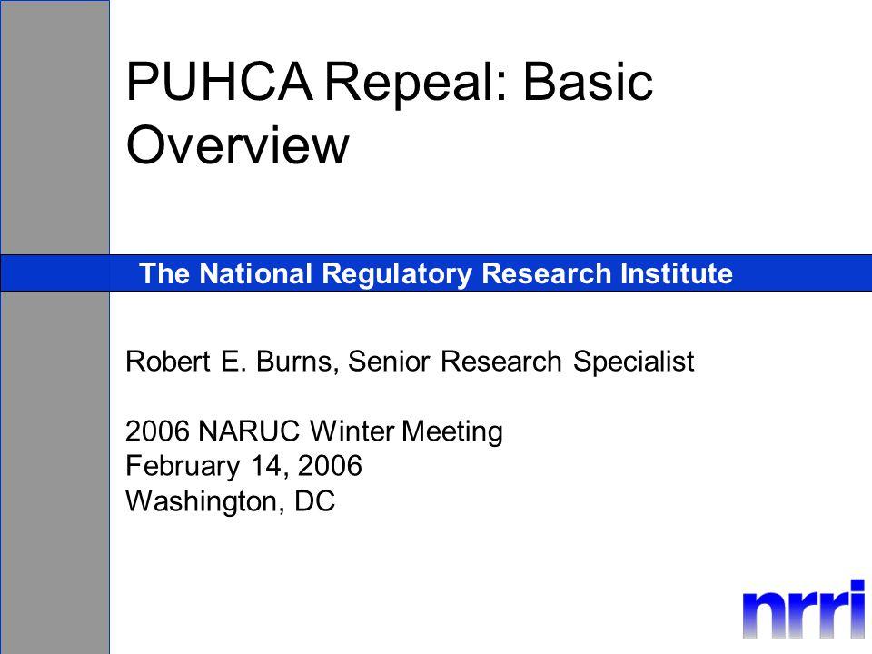 The National Regulatory Research Institute Robert E.