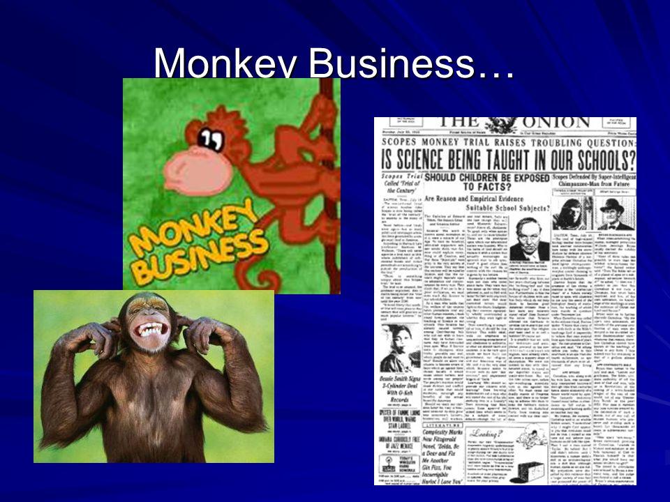 Monkey Business…