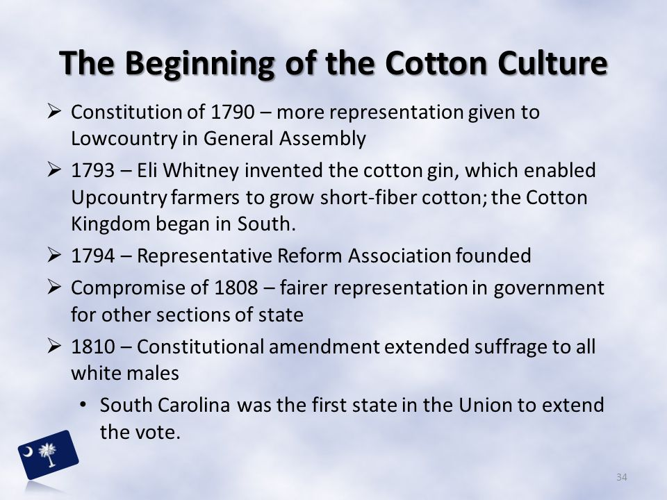 The Beginning of the Cotton Culture  Constitution of 1790 – more representation given to Lowcountry in General Assembly  1793 – Eli Whitney invented