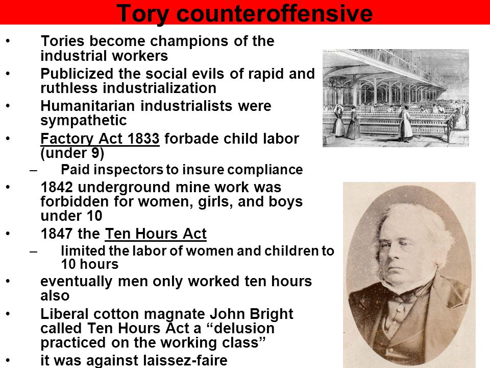 Tory counteroffensive Tories become champions of the industrial workers Publicized the social evils of rapid and ruthless industrialization Humanitari