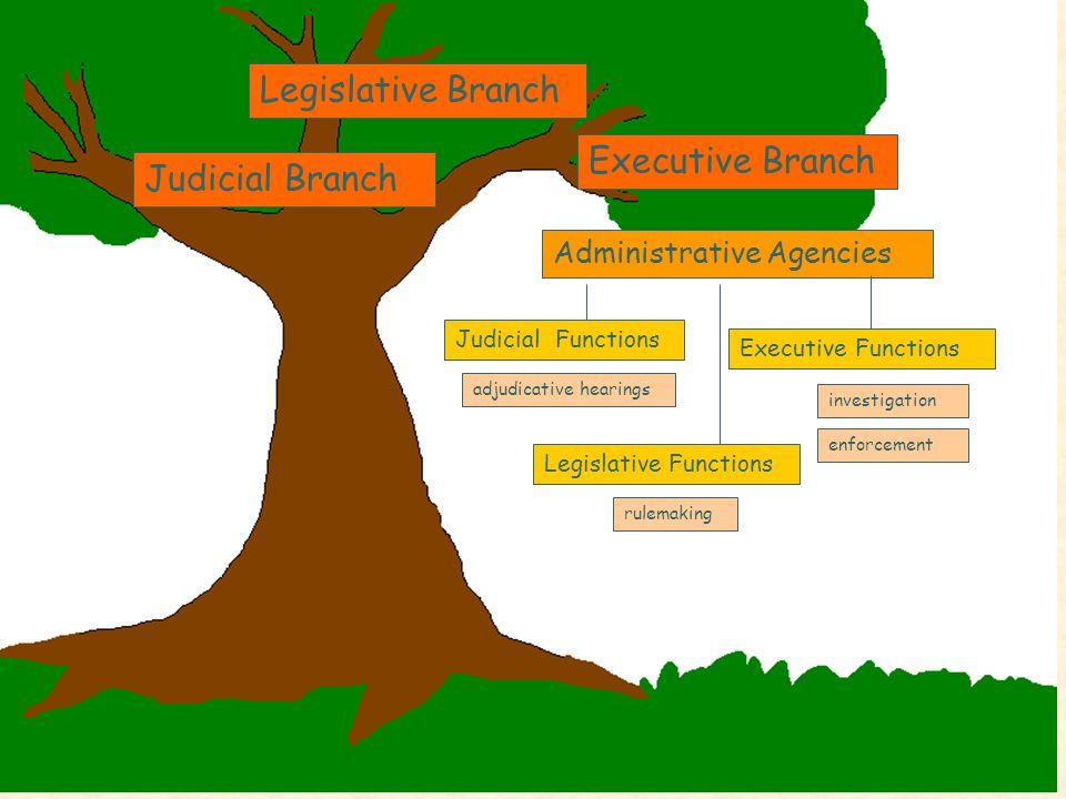 Legislative Branch Judicial Branch Executive Branch Administrative Agencies Judicial Functions Legislative Functions Executive Functions investigation enforcement rulemaking adjudicative hearings