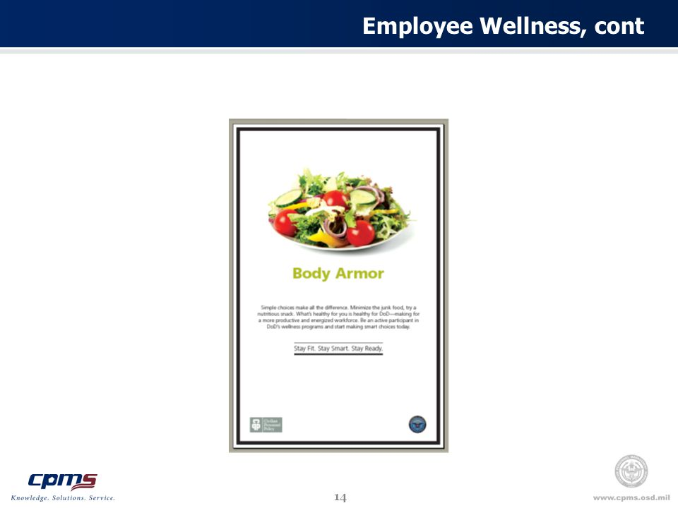 14 Employee Wellness, cont