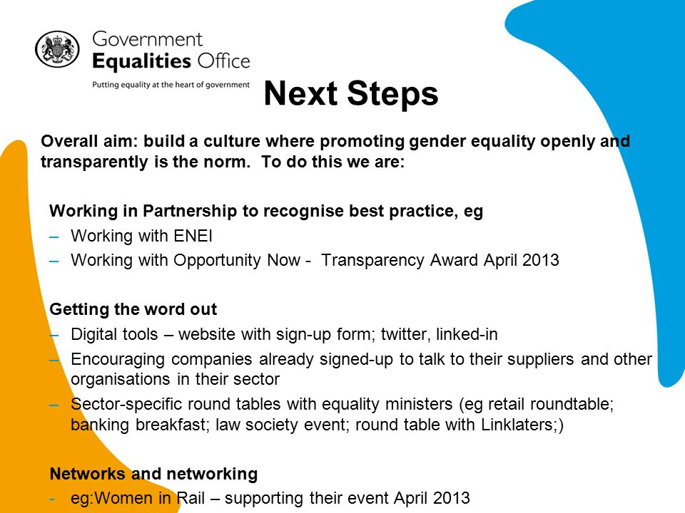 Next Steps Overall aim: build a culture where promoting gender equality openly and transparently is the norm.