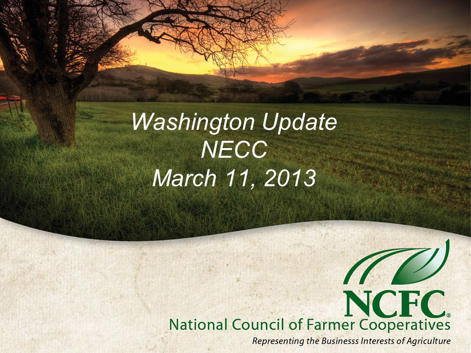 Washington Update NECC March 11, 2013