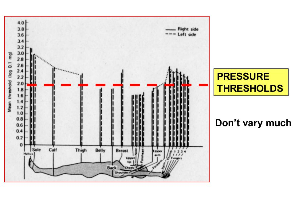 PRESSURE THRESHOLDS Don't vary much