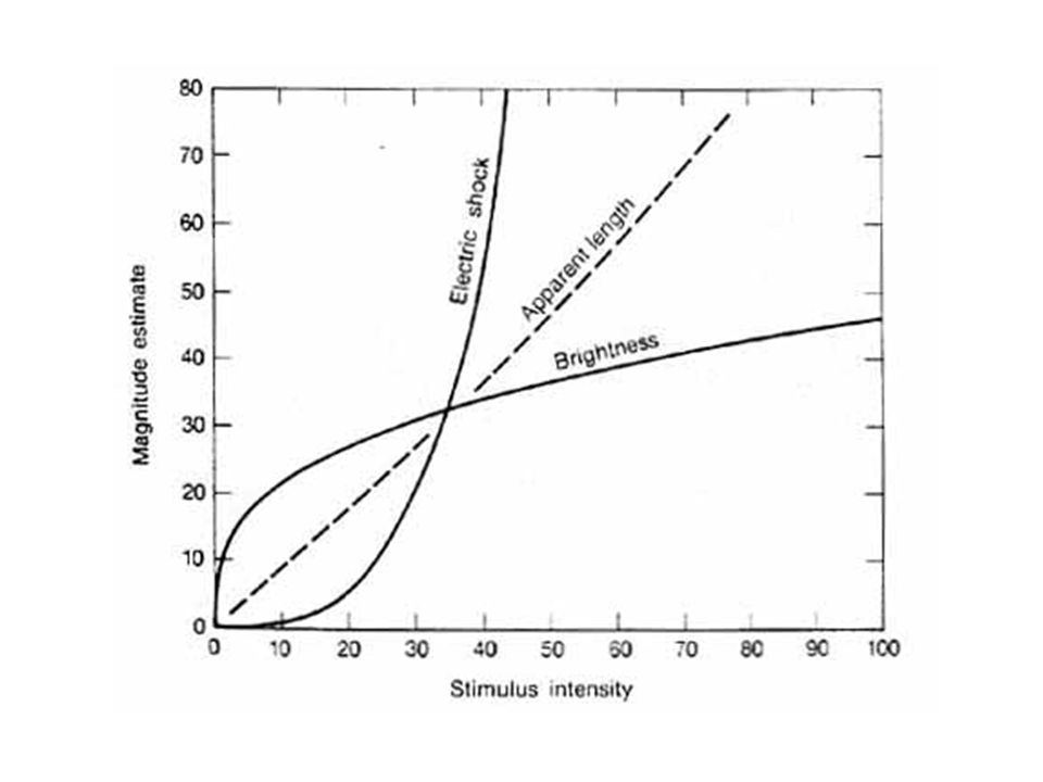 Consequences of Steven's Law response compression response expansion linear on a log scale