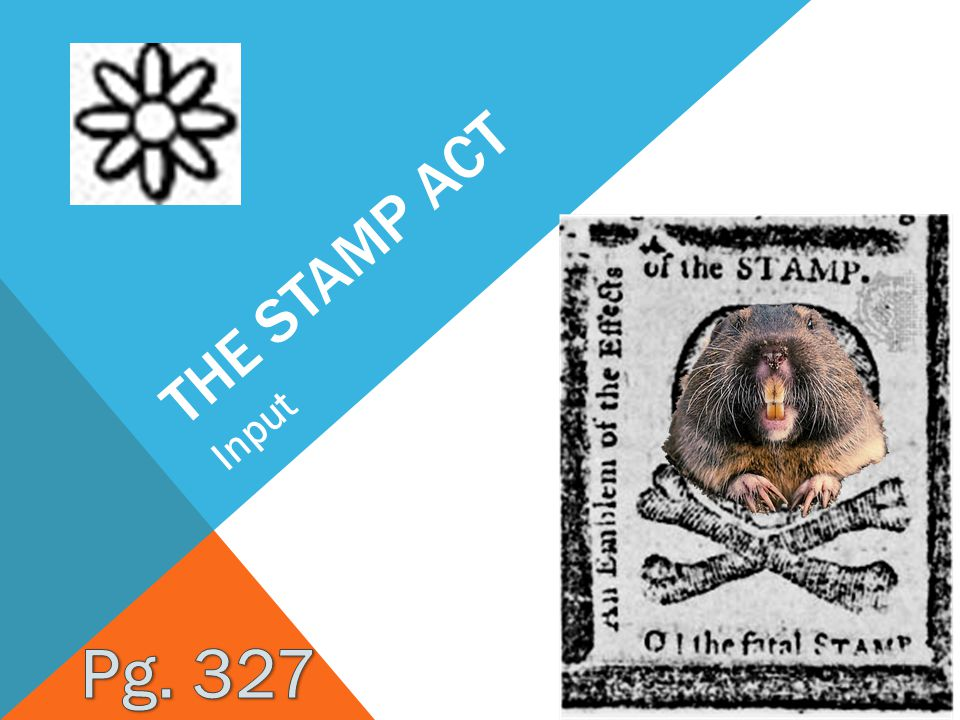 THE STAMP ACT Input