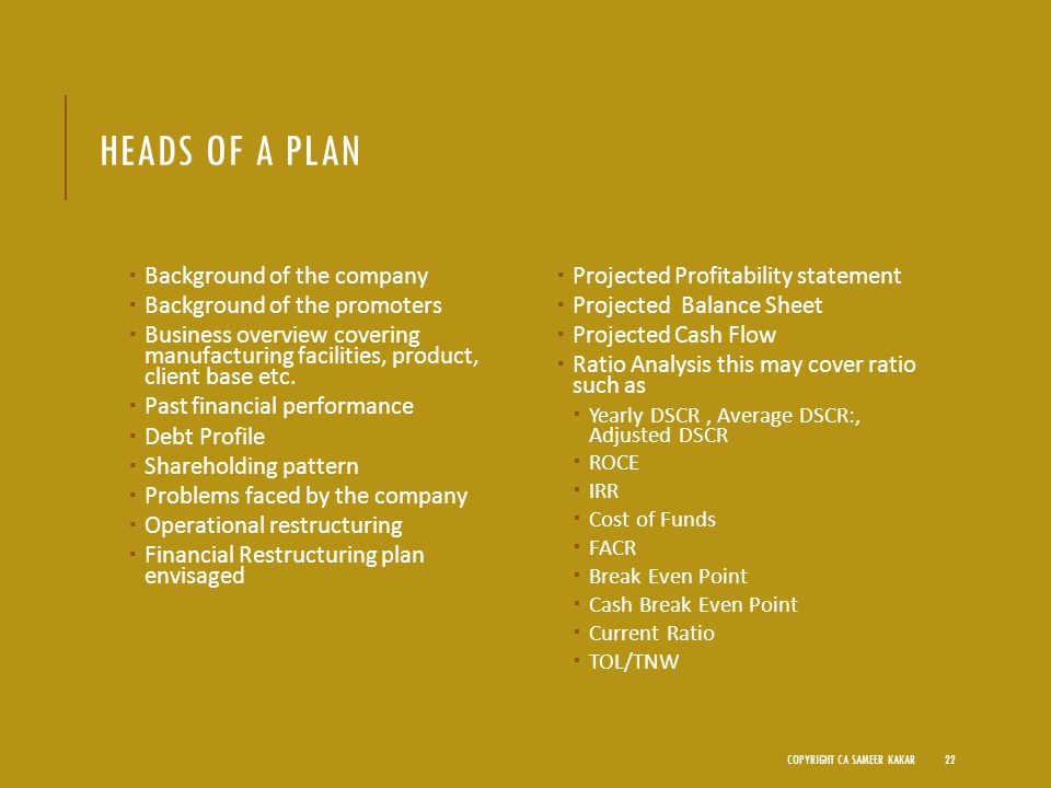 HEADS OF A PLAN  Background of the company  Background of the promoters  Business overview covering manufacturing facilities, product, client base etc.