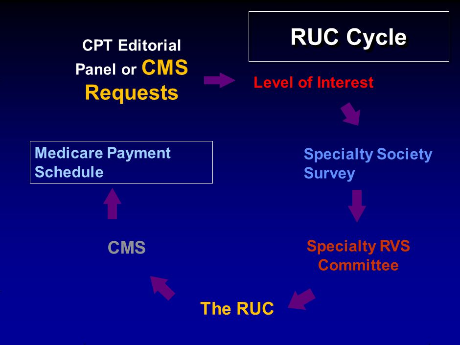 RUC Cycle CPT Editorial Panel or CMS Requests Level of Interest Specialty Society Survey Specialty RVS Committee Medicare Payment Schedule The RUC CMS