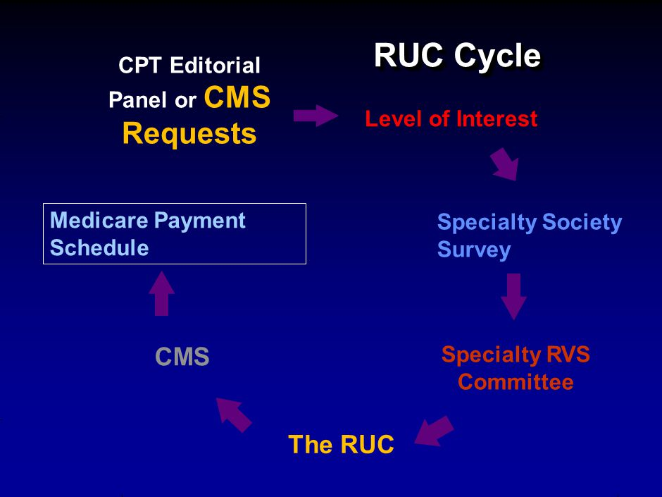 RUC Cycle RUC Cycle CPT Editorial Panel or CMS Requests Level of Interest Specialty Society Survey Specialty RVS Committee Medicare Payment Schedule The RUC CMS