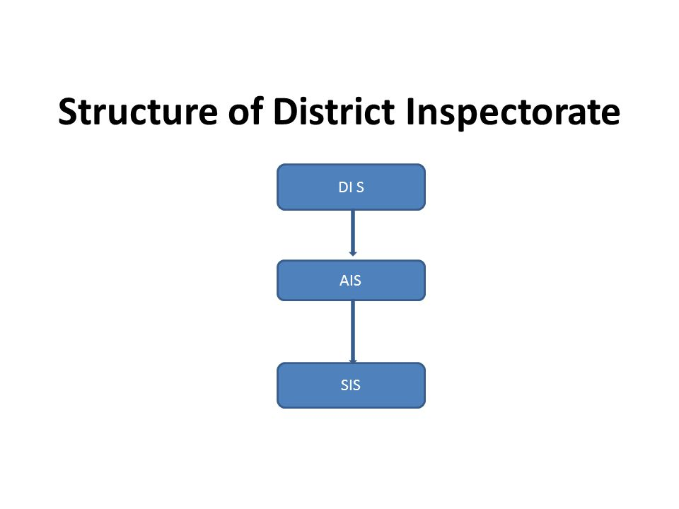 Structure of District Inspectorate DI S AIS SIS