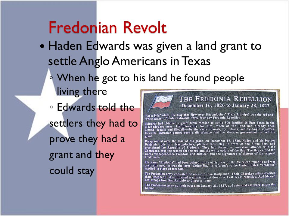 Fredonian Revolt Haden Edwards was given a land grant to settle Anglo Americans in Texas ◦ When he got to his land he found people living there ◦ Edwa