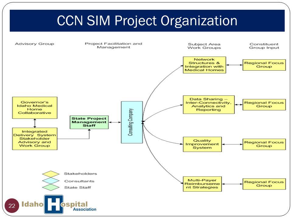 CCN SIM Project Organization 22