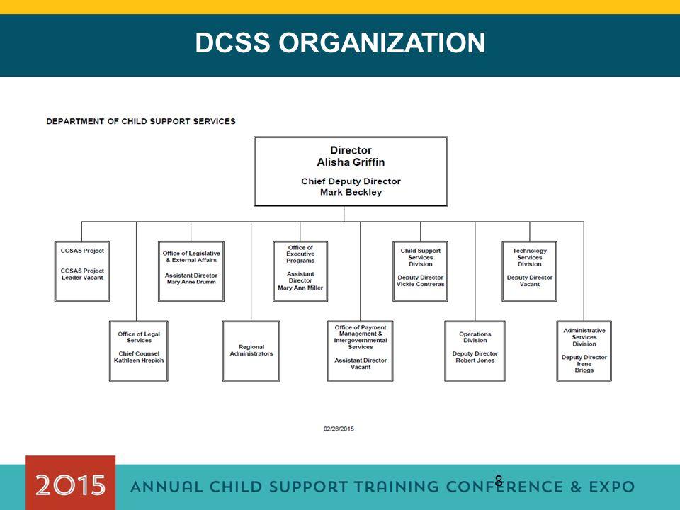 8 DCSS ORGANIZATION