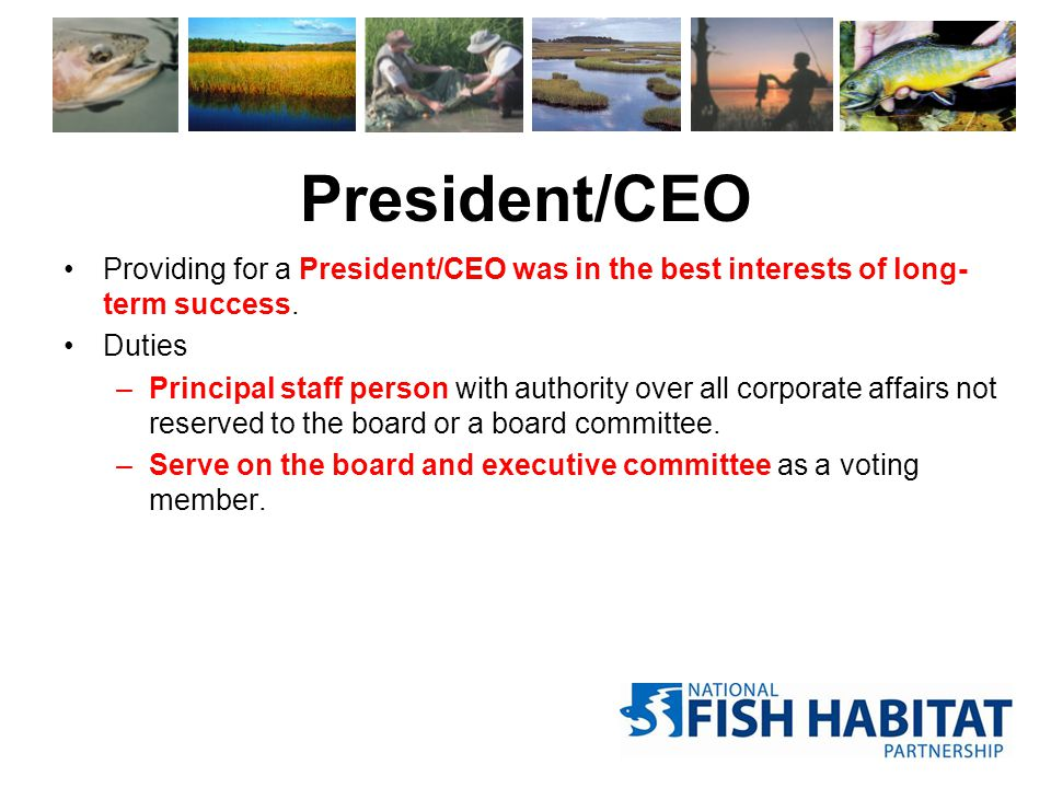 President/CEO Providing for a President/CEO was in the best interests of long- term success. Duties –Principal staff person with authority over all co