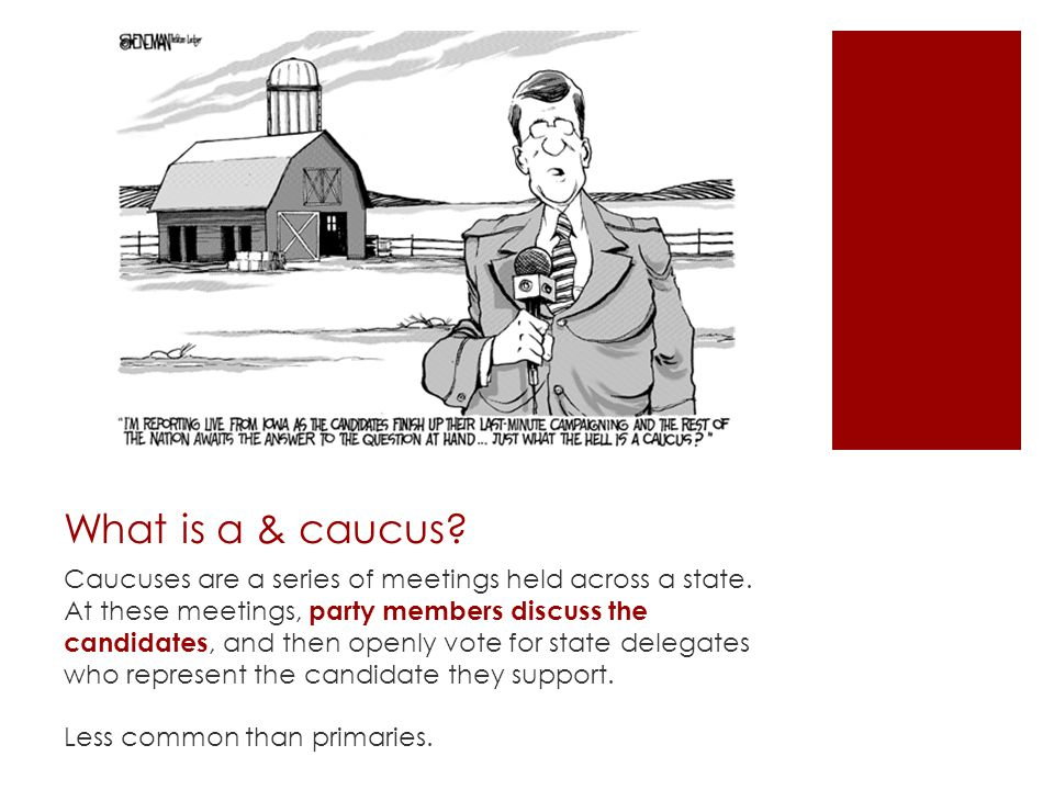 What is a & caucus. Caucuses are a series of meetings held across a state.