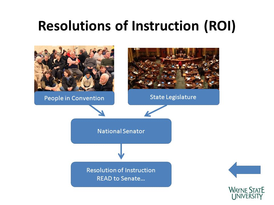 Resolutions of Instruction (ROI) National Senator Resolution of Instruction READ to Senate… People in Convention State Legislature
