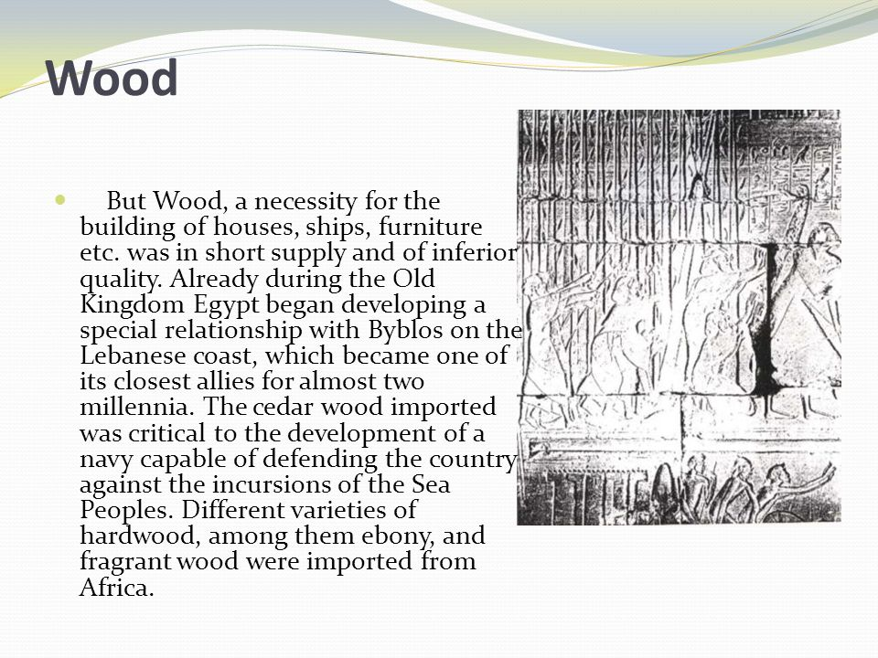 Wood But Wood, a necessity for the building of houses, ships, furniture etc.