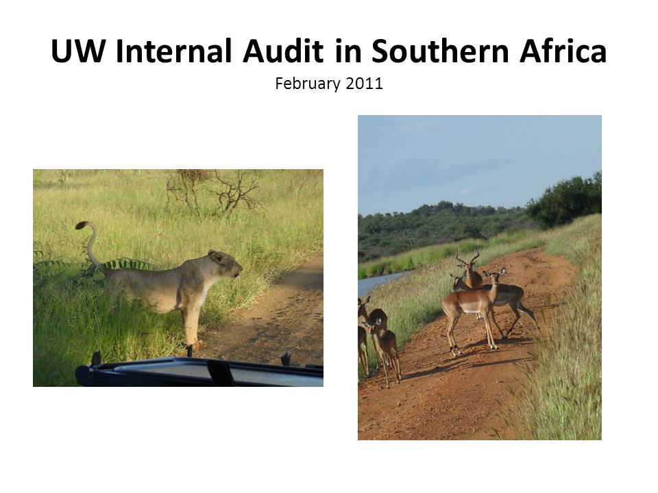 UW Internal Audit in Southern Africa February 2011