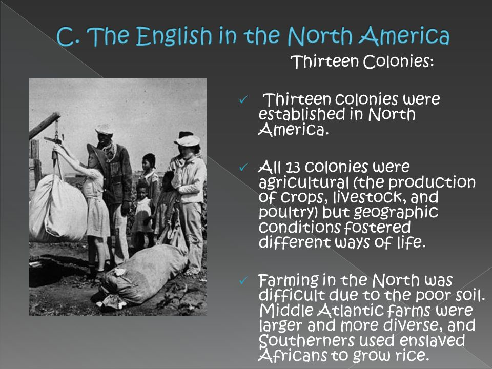 Thirteen Colonies: Thirteen colonies were established in North America. All 13 colonies were agricultural (the production of crops, livestock, and pou