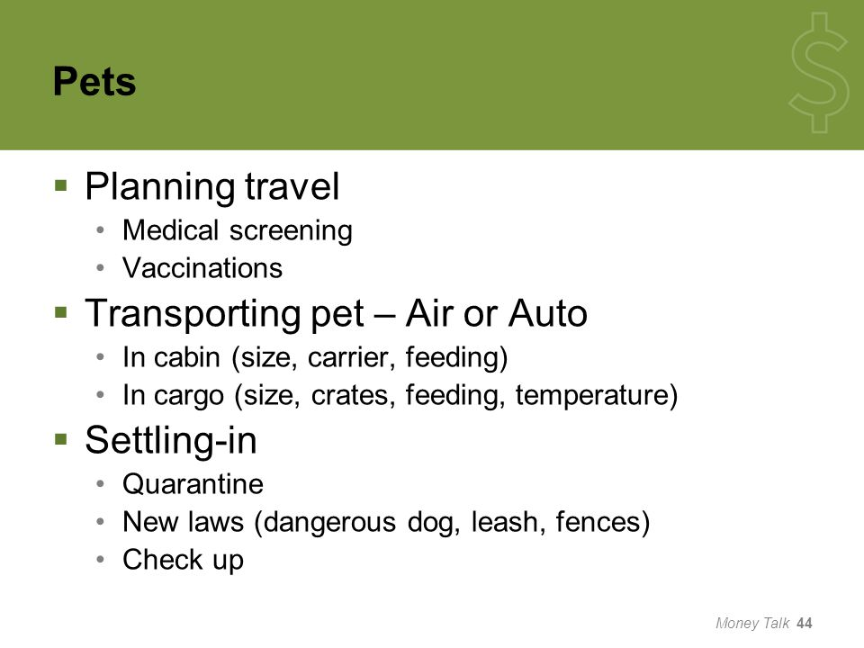 Pets  Planning travel Medical screening Vaccinations  Transporting pet – Air or Auto In cabin (size, carrier, feeding) In cargo (size, crates, feeding, temperature)  Settling-in Quarantine New laws (dangerous dog, leash, fences) Check up Money Talk 44