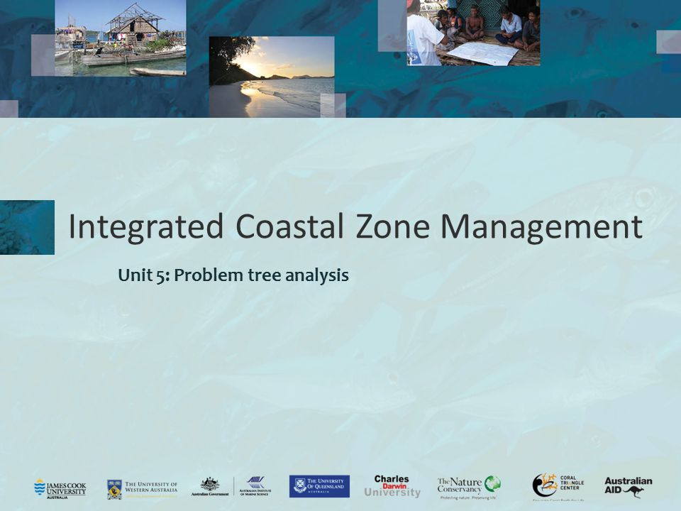 Integrated Coastal Zone Management Unit 5: Problem tree analysis