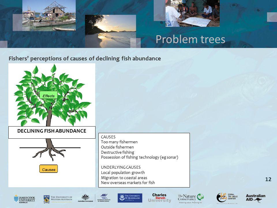 12 Problem trees DECLINING FISH ABUNDANCE CAUSES Too many fishermen Outside fishermen Destructive fishing Possession of fishing technology (eg sonar)
