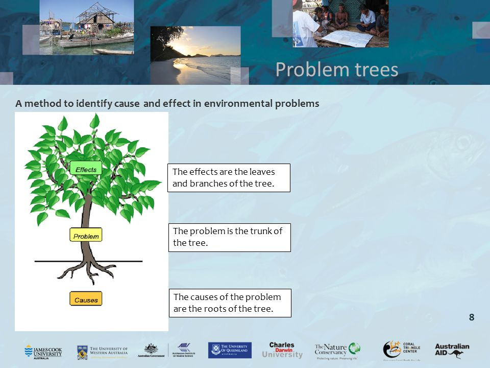 8 A method to identify cause and effect in environmental problems Problem trees The effects are the leaves and branches of the tree. The problem is th