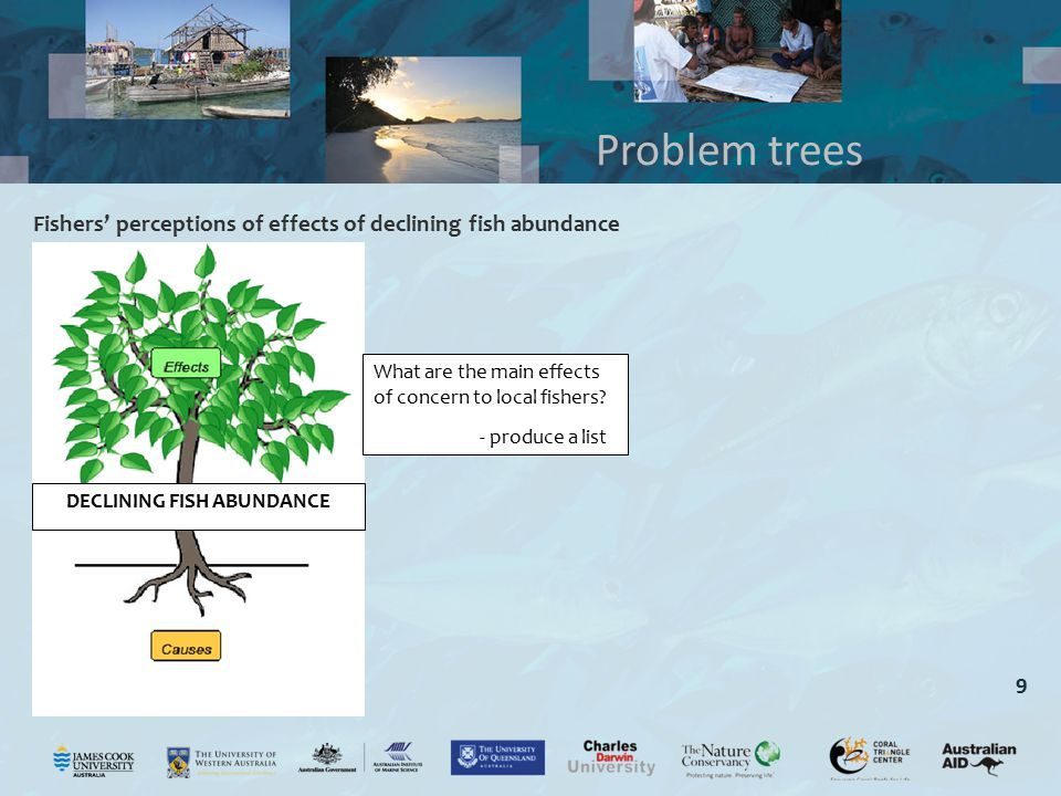 9 Fishers' perceptions of effects of declining fish abundance Problem trees What are the main effects of concern to local fishers? - produce a list DE